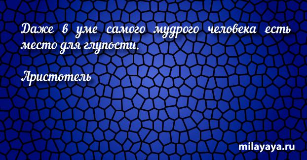 Красивая цитата со смыслом для женщин (картинка с надписью 236)