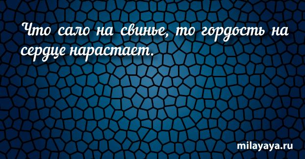Короткая пословица для женщин в картинках (картинка 48)