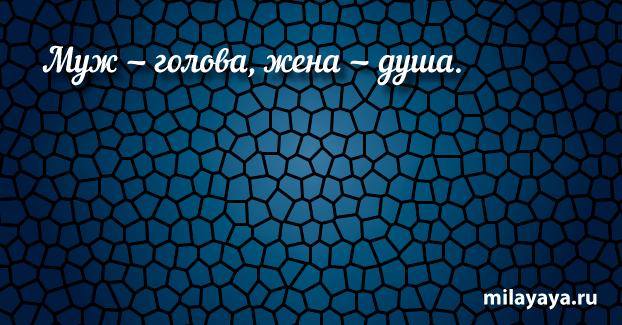 Короткая пословица для женщин в картинках (картинка 56)