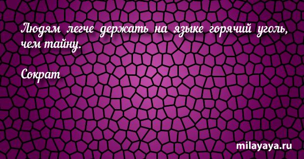 Афоризм про жизнь со смыслом для женщин и девушек (картинка 333)