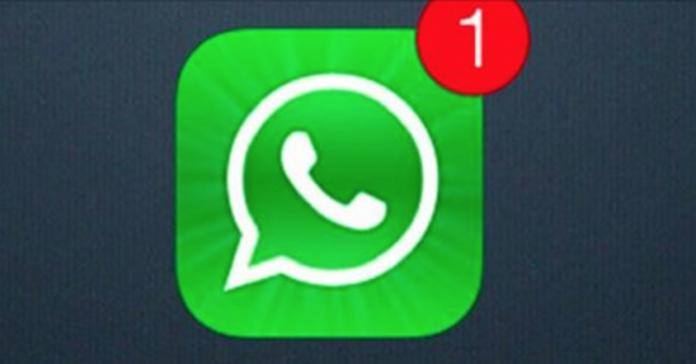 Новый вирус, опасный для всех пользователей WhatsApp. Вот что нельзя делать ни в коем случае!