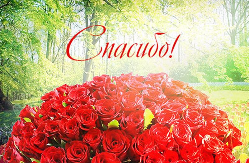 Красивые открытки благодарю розы, букет
