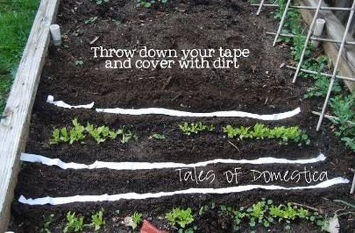 Лайфхак для сада: как упростить посадку растений с помощью… туалетной бумаги!