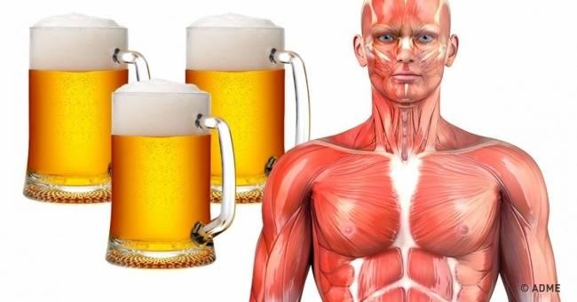 Мыпроверили что будет, если часто пить пиво