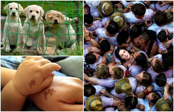 18 захватывающих снимков, которые вызывают неподдельные эмоции