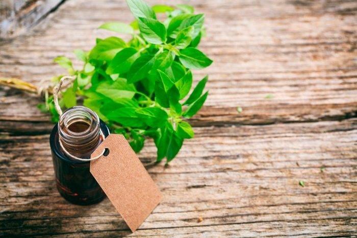 10 эфирных масел, которые помогут вернуть хорошее самочувствие
