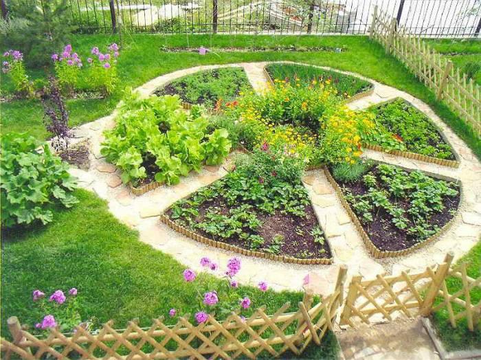 20 идей дизайна грядок из дерева, которые стоит взять на заметку садовникам
