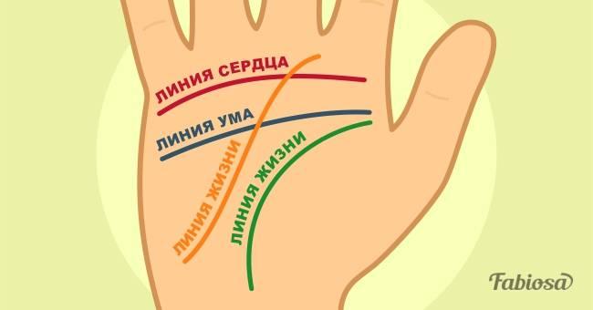 Как научиться гадать по руке. Достаточно запомнить значение 4 линий!