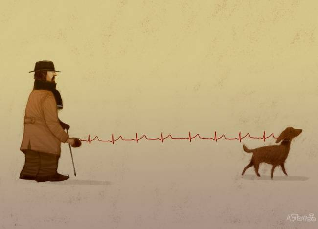Невозможно посмотреть наэти 17иллюстраций инезахотеть завести собаку