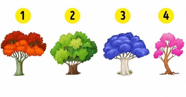 Выберите дерево, чтобы узнать, какие перемены ожидают вас вновом году