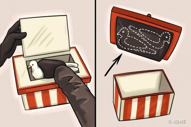 Раскрываем 8секретов, накоторых основаны трюки мастеров фокусов ииллюзии