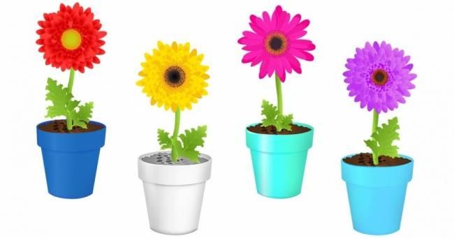 Тест: Выберите наиболее приятное для вас сочетание цветов, иузнайте, что обэтом говорят психологи