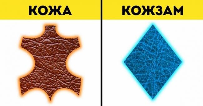 10разновидностей натуральной кожи икак быстро отличить ееоткожзама