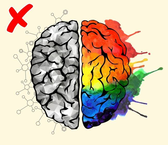 7научно доказанных фактов омужском иженском мозге истереотипы, которые пора забыть