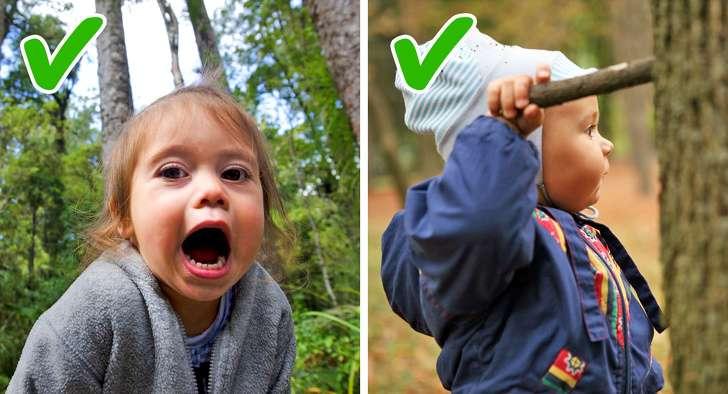 10правил выживания летом влесу. Инструкция, которую надо знать детям ивзрослым