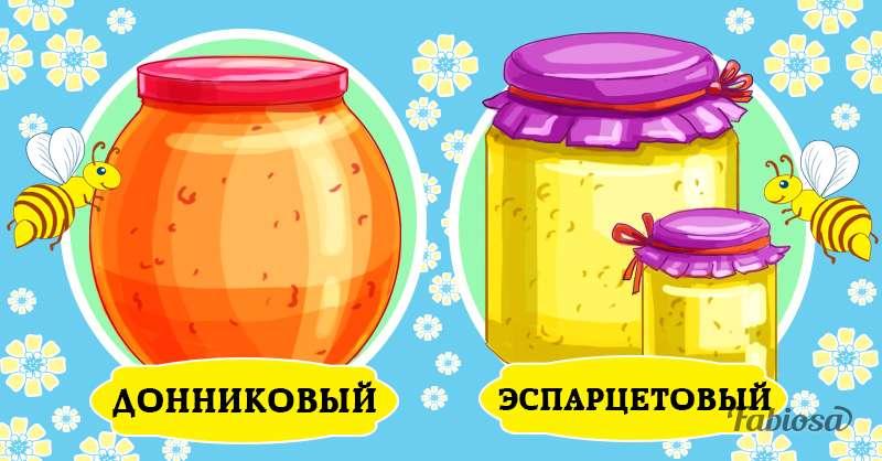 Минутка Винни - Пуха: 10 сортов меда и их отличительные черты