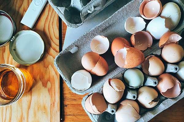10 причин не выбрасывать яичную скорлупу, если у вас есть дача