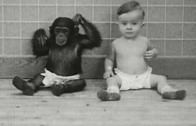 9неоднозначных экспериментов сучастием детей, которые вызывают бурю праведного возмущения