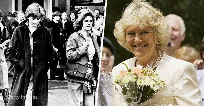Какой была Камилла Паркер-Боулз до того, как вошла в королевскую семью