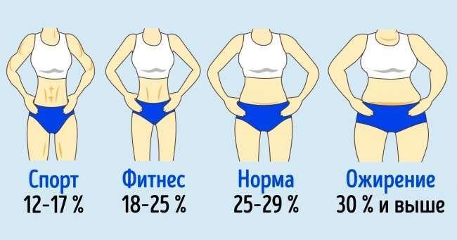 Сколько жира должно быть вздоровом организме
