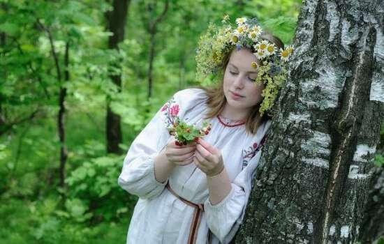 Приметы и суеверия, связанные с деревьями. Почему нельзя сажать ель и осину около дома?