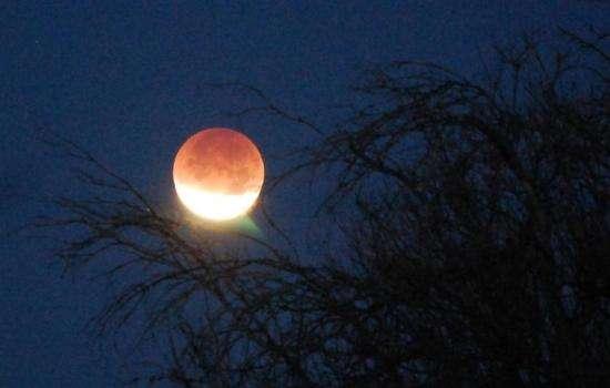 Затмения 2019: раскрываем свой творческий потенциал. Что ждет Львов, Раков, Козерогов и Водолеев