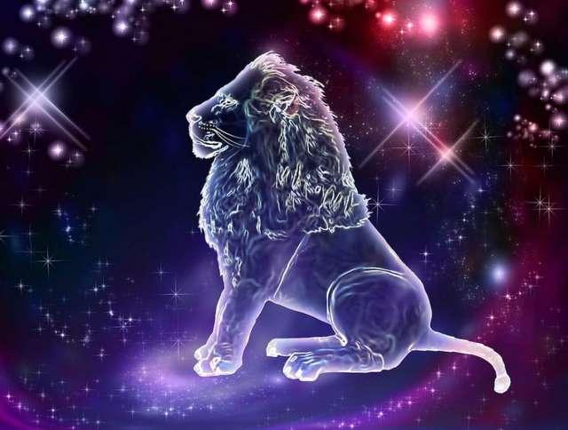 Кто подходит Льву-мужчине по гороскопу: совместимость с другими знаками зодиака