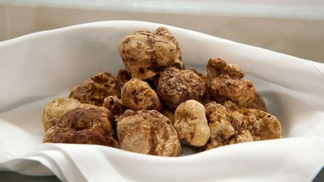 Икра белуги-альбиноса, черный арбуз и другие продукты, которые едят только богатые. А бедные – если повезет