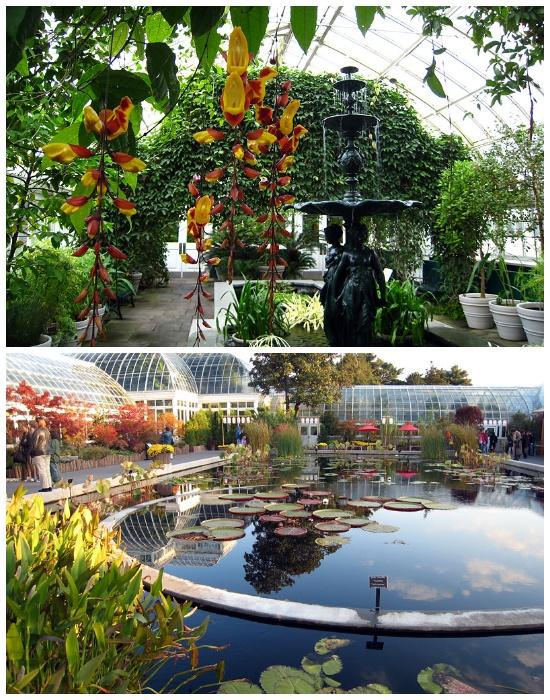 7 лучших ботанических садов мира, по которым хочется бродить часами