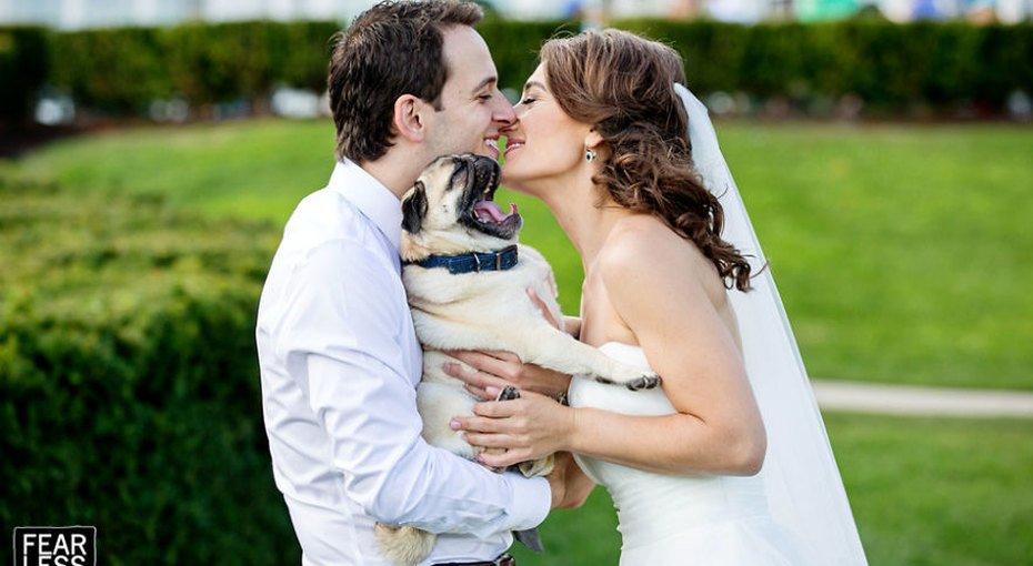 Свадебные фотографии, какими их еще не видели