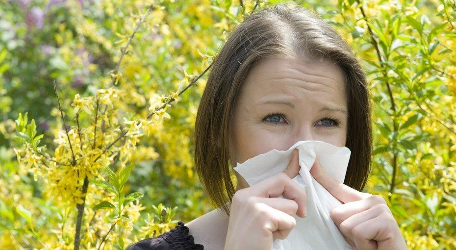 Выжить с аллергией: 6 советов, которые облегчат «высокий» сезон