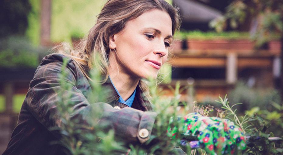 6 худших дачных вредителей: как с ними бороться без применения пестицидов