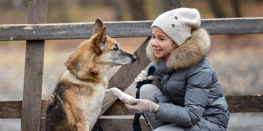 Мы с тобой одной крови: школьница из Подмосковья понимает язык животных