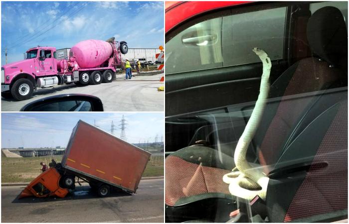 16 курьезных фотографий, герои которых нескоро забудут о том, что случилось с ними в дороге