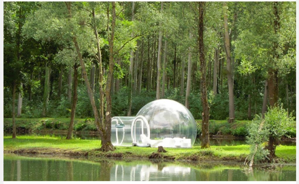 В любое время года: прозрачный шар для наслаждения природой
