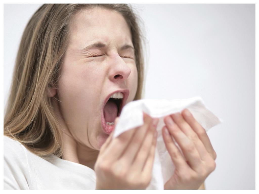 Будьте здоровы: неожиданные факты о чихании, о которых нам не рассказывали в школе