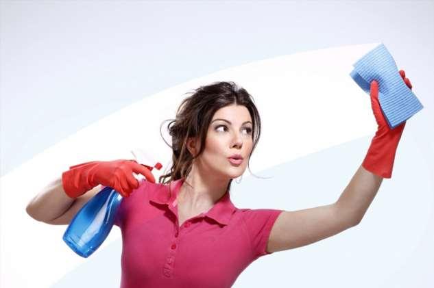 Причины любви к уборке дома