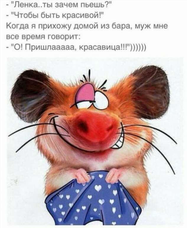 Женский юмор. Нежный юмор. Подборка milayaya-milayaya-20480503112019-11 картинка milayaya-20480503112019-11