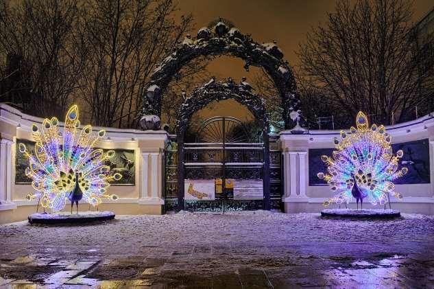 Лучшие елки-2020 в Москве: научные эксперименты, страна Оз на льду и Новый год в опере