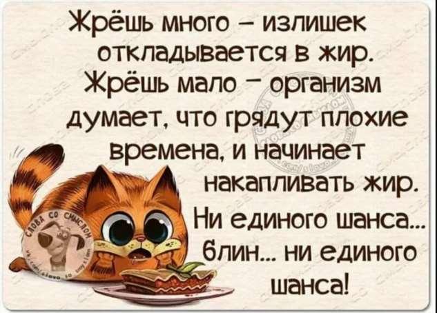 Женский юмор. Нежный юмор. Подборка milayaya-milayaya-16590815012020-13 картинка milayaya-16590815012020-13